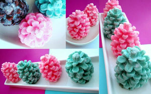 The Ultimate Teacher Gifts for 2015 Holiday - Adorable, Affordable and Handmade Pine Cone Soaps