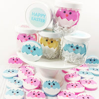 Blue Easter Chick Soap Gift Set handmade by Sunbasilsoap.com