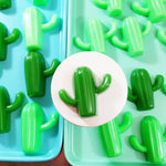Cactus soap for succulent lovers handmade soap at Sunbasil Soap