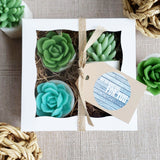 We are Rooting for You Succulent Soap Gift Set gifts of encouragement graduation gift ideas at Sunbasil Soap