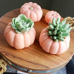 Orange Pumpkin Succulent Soap www.sunbasilsoap.com
