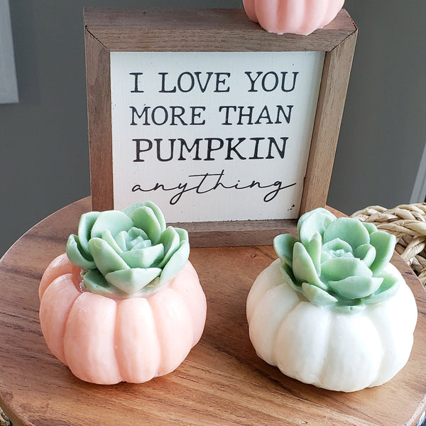 Pumpkin Succulent Soaps : Set of Two www.sunbasilsoap.com