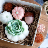 Autumn Pumpkin Succulent Soap Gift Set www.sunbasilsoap.com