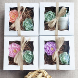 Succulent and Lavender Flower Soap Gift Box www.sunbasilsoap.com