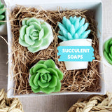 Succulent Soaps - Set of 3 soap succulents www.sunbasilsoap.com