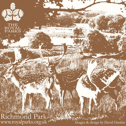Richmond Park Carrier Bag