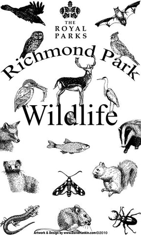 Richmond Park Wildlife Tea Towel