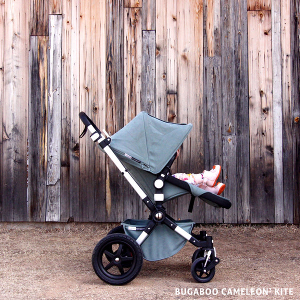 Starship for Littles / bugaboo cameleon3 kite
