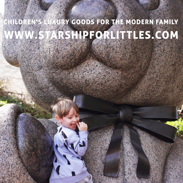 Starship for Littles / beau loves
