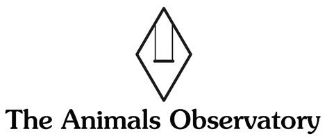 the animals observatory TAO US stockist