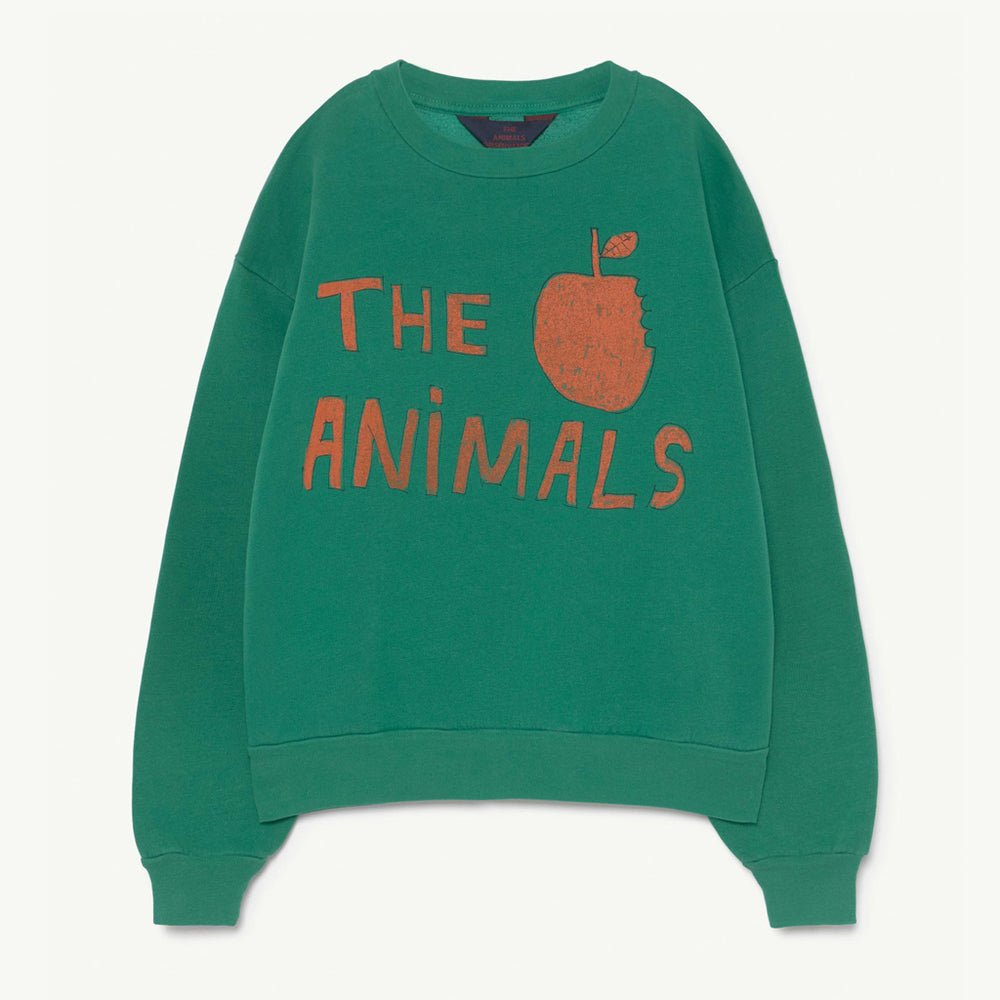 Bear Kids Sweatshirt Green TAO by The Animals Observatory