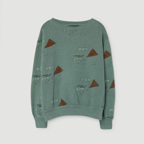 Bear Baby and Kids Sweatshirt in Turquoise Kites by The Animals Observatory
