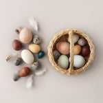 A Dozen Bird Eggs by Moon Picnic