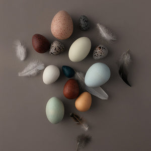 Load image into Gallery viewer, A Dozen Bird Eggs by Moon Picnic