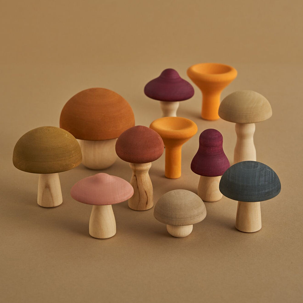 Load image into Gallery viewer, Mushroom Set by Raduga Grez
