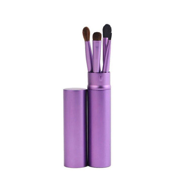 Professional 5pcs Eye Brushes Cosmetic Makeup Brush Set