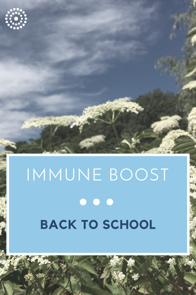 Immunity: A Back to School Boost
