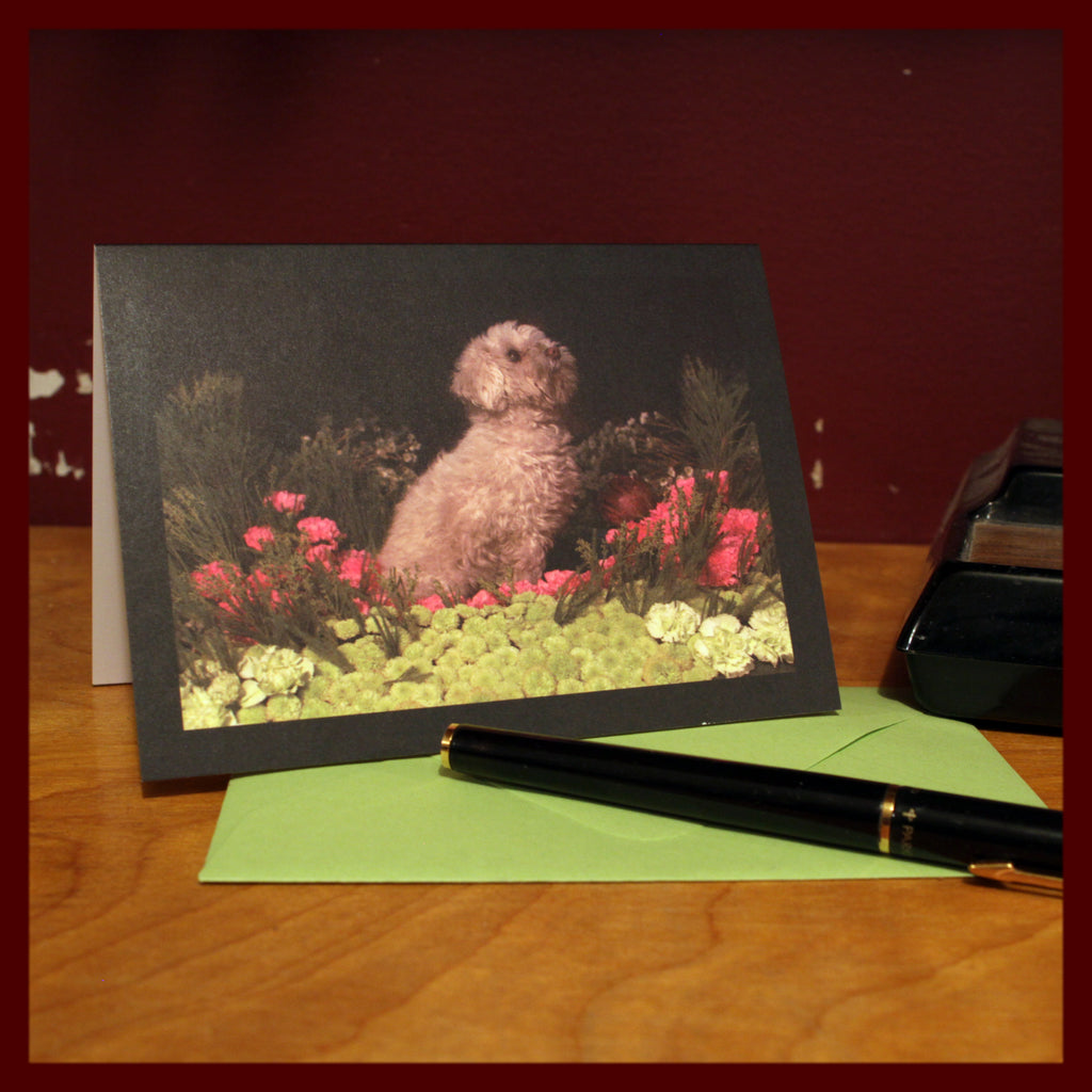 Earth Dog Notecards