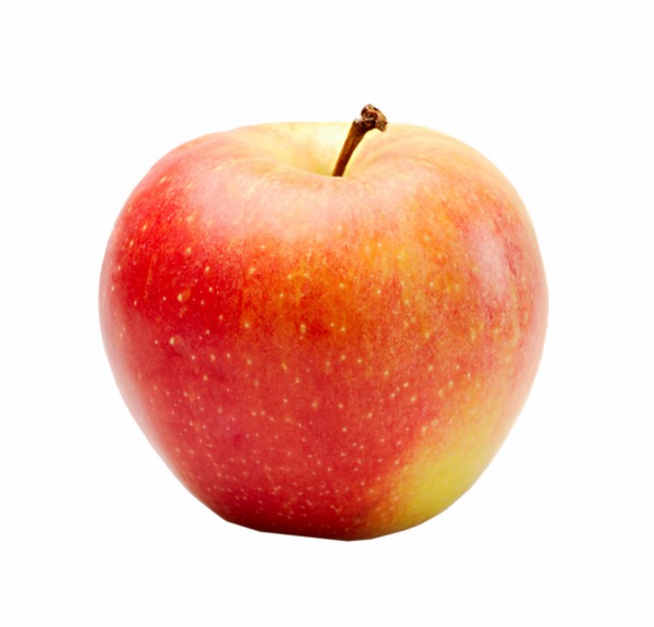 Gala Apple, 6 Pack