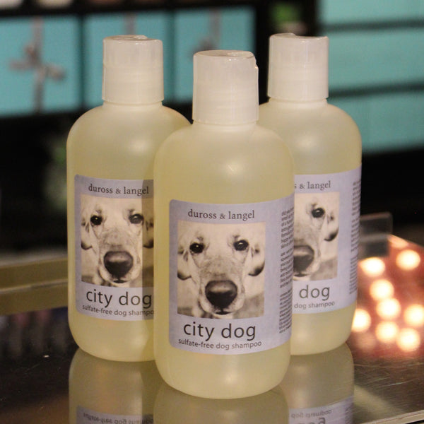 city dog shampoo