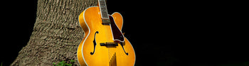 Hollowbody Archtop