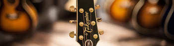 Takamine Guitars Dealer - The Music Zoo