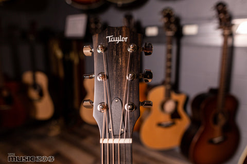 Taylor 300 Series Acoustic Guitars 6