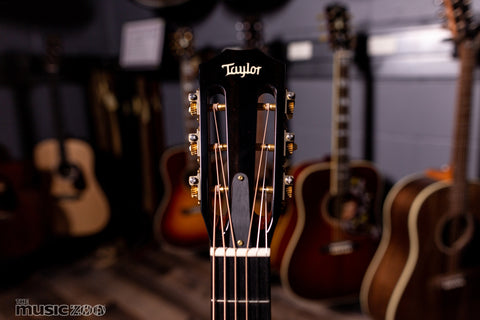 Taylor 500 Series Acoustic Guitars 6