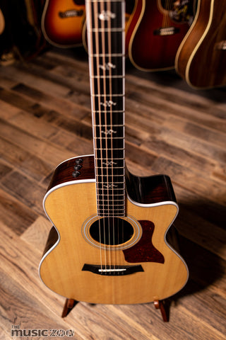 Taylor 400 Series Acoustic Guitars 1
