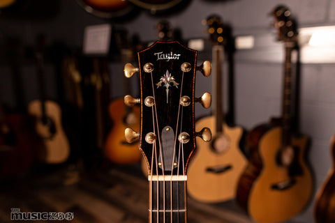 Taylor 900 Series Acoustic Guitars 6