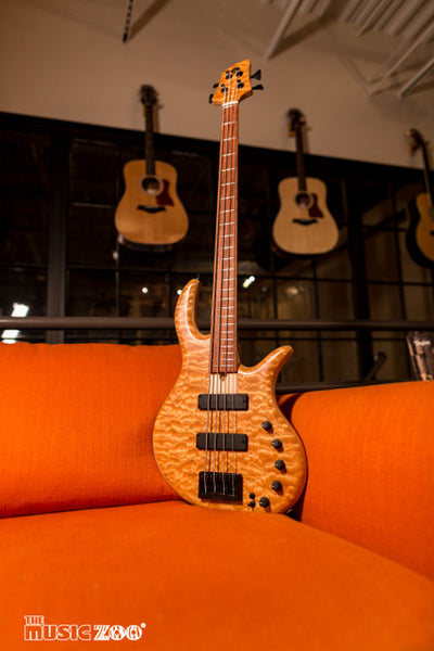 Elrick Gold Series e-volution bass 2