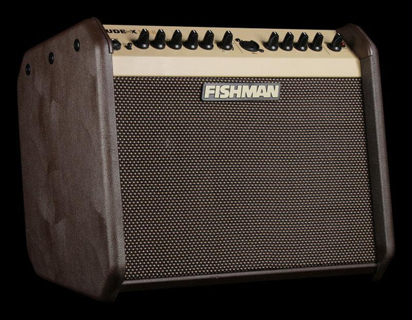 Fishman Loudbox Mini Amp - The Music Zoo