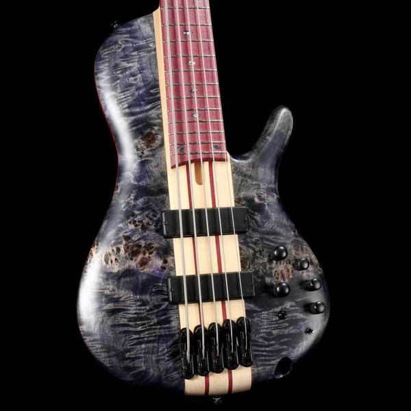 Top 10 Basses In Stock The Music Zoo Tuesday