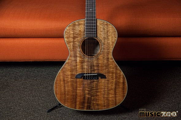 Alvarez Acoustics (2 of 13)