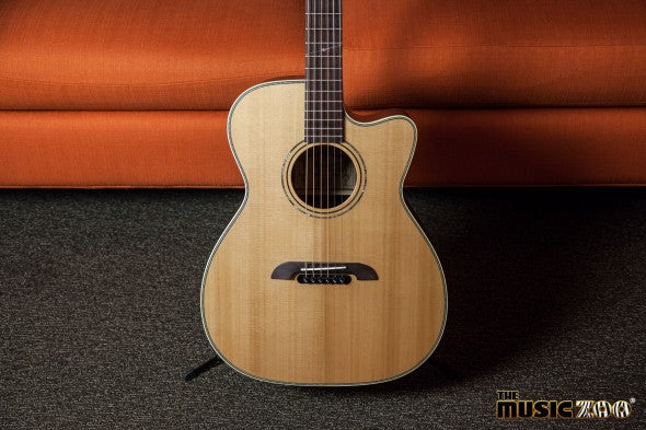 Alvarez Acoustics (6 of 13)