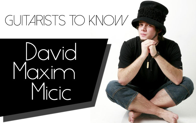 David Maxim Micic Blog Main