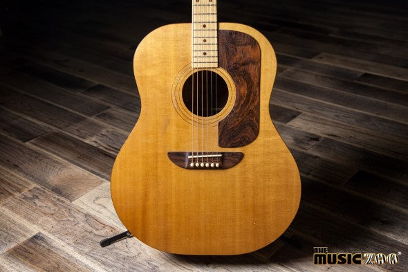 Ernie Ball Acoustic (1 of 7)