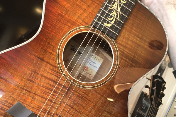 NAMM 2020: Taylor Custom Guitars Coming To The Music Zoo!