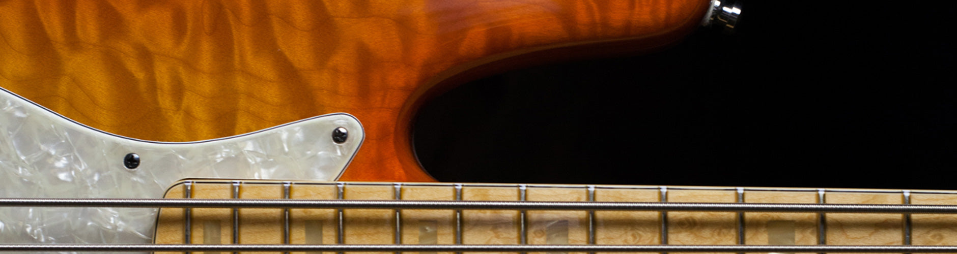 Fender Custom Shop Basses At The Music Zoo