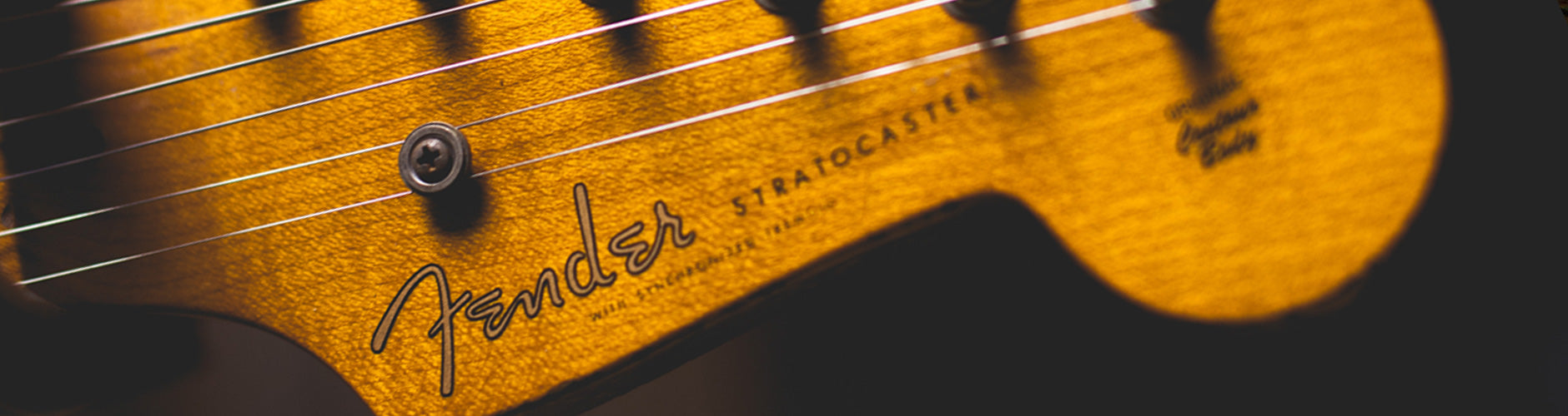 Fender Acoustic Guitars At The Music Zoo