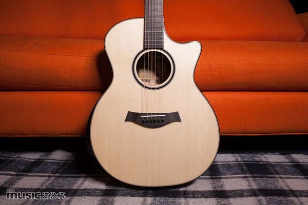 Taylor Custom Shop Grand Auditorium Music Zoo 25th Anniversary Limited Edition Acoustic Guitar Review!