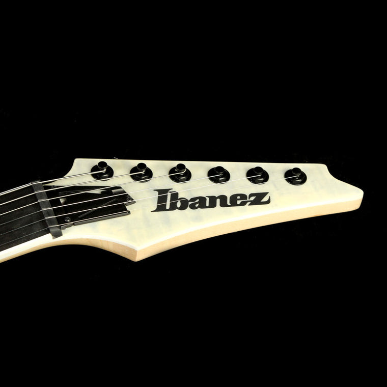 Ibanez RGAIX6FM Iron Label White Frost Flat