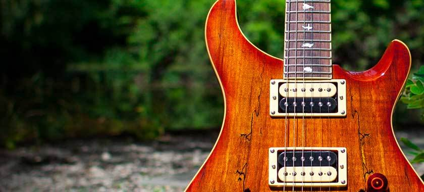PRS Guitars - The Music Zoo