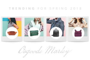 Make a Spring Statement with Osgoode Marley