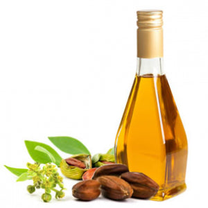 Lets Talk About Jojoba Oil!