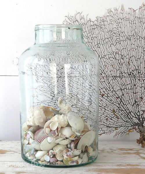 Vintage Hungarian Jar with sea shells