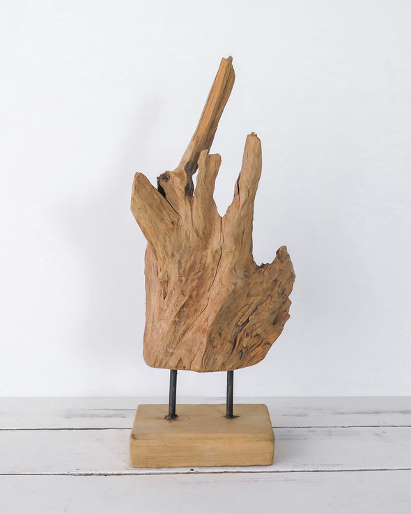 Teak Wood Driftwood Sculpture