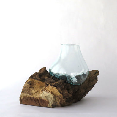 Hand Blown Glass on Teak Driftwood