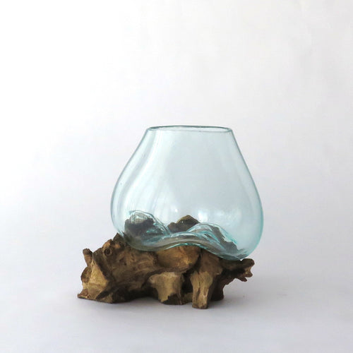 molten glass on driftwood terrarium