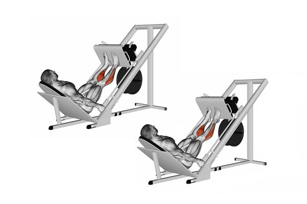 calf press on leg press machine exercise instruction in illustrations